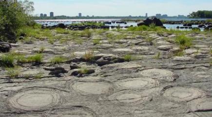 stromatolites_champlain_bridge