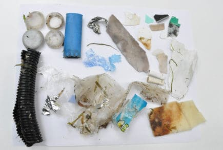 Macroplastics found in the Ottawa River