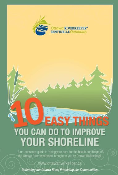 10 Easy Things You Can Do to Improve Your Shoreline