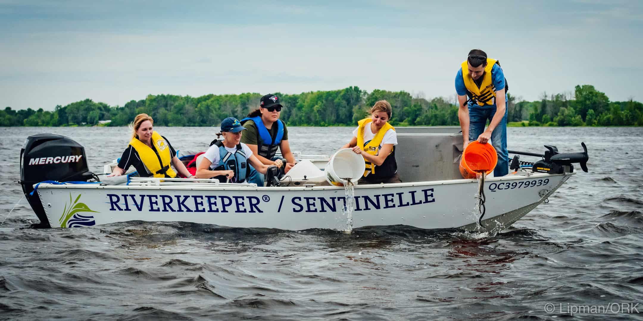 Ottawa Riverkeeper releases 400 American Eels into the Ottawa River
