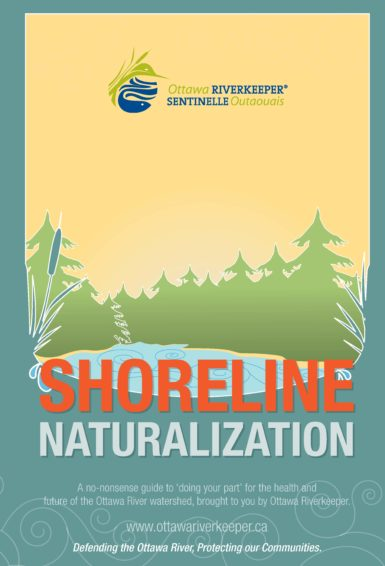 Shoreline Naturalization