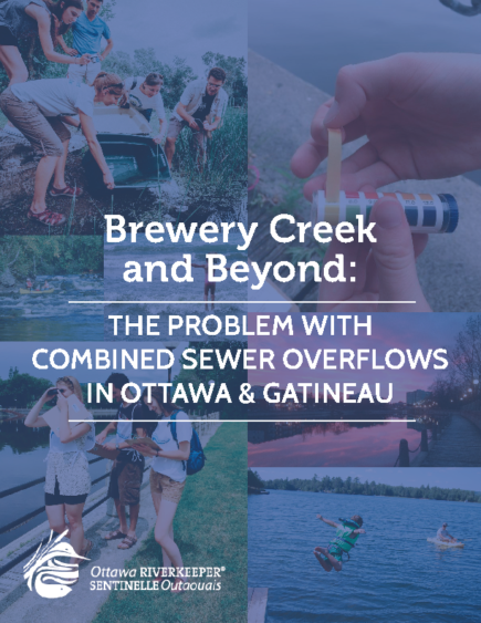 Brewery Creek and Beyond