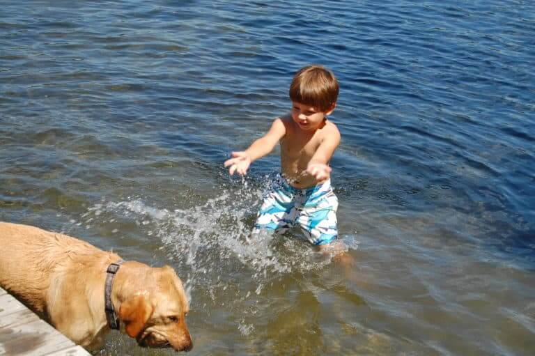 A boy plays in clean water with his dog
